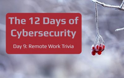The 12 Days of Cybersecurity: Day 9